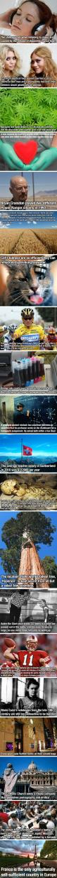 Needed to know all of this...: Weird Facts, Fun Facts, Catholic Churches, Facts Interesting, Crazy Facts, Interesting Wonder, Interesting Facts, Funfacts, Random Facts