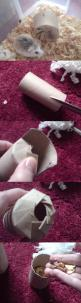 This D.I.Y 'Christmas Cracker' toy is such a good idea to combine recycling, chewing and foraging for small pets!: Diy Rabbit Toy, Good Ideas, Diy Guinea Pig Toy, Diy Hamster Cage, Small Pets, Diy Hamster Toy, Hamster Diy Toy, Diy Rabbit Cage, Com