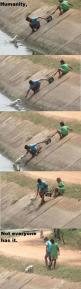 Two children working together to rescue a dog <3: Awww, Life, Sweet, Hero, Random, Things, Photo, Animal