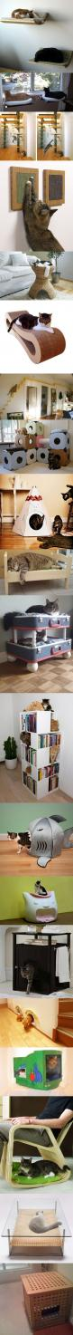 Here are twenty fun and geeky furniture designs for cats.: Cats, Cat Furniture, Pet, Crazy Cat, Furniture Design, Cat Stuff, Animal