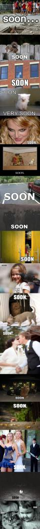 Soon...lol wtf?: Giggle, Horse, Funny Stuff, Funnies, Humor, Things, So Funny