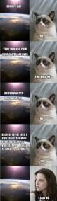grumpy cat is made into kristen stewart, funny pictures: Cats, Grumpycat, Funny Pictures, Kristen Stewart, Funny Stuff, Funnies, Grumpy Cat