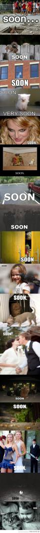 Soon...: Giggle, Horse, Funny Stuff, Funnies, Humor, Things, So Funny