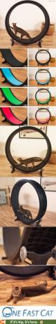 An exercise wheel for Cats! My cat needs one of these! [Would be neat, if mine would actually use it]: Cat Name, For The Cat, Furniture Pet, Cat Exercise, Cat Tree, For Cat