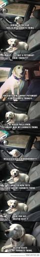 True.: Favorite Things, Dogs, Dog S Favorite, Puppy, Funny Animal
