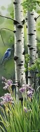 """White Birches & a Blue Bird;  Amazing...this is ONE of the videography shots I was thinking of for SPRING: """"Weather/Texture,"""" in my final video project for the Integrated Digital Media Class.: Paintings Of Birch Trees, Art Watercolor, Birch Tr"""