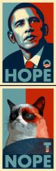 Grumpy Cat knows what's up.: Cats, Giggle, Funny Things, Grumpycat, Funny Stuff, Funnies, Humor, Grumpy Cat