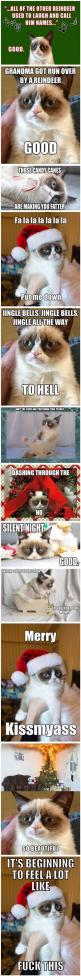 Grumpy Cat At Christmas HAHAHAHAHAH THIS JUST MADE MY DAY!: Cats, Grumpy Kitty, Grumpycat, Merry Kissmyass, Funny, Angry Cat, Grumpy Cat Christmas, Merry Christmas
